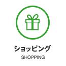 敷島近郊でのショッピング
